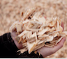 Local heat production with wood chips in Finland